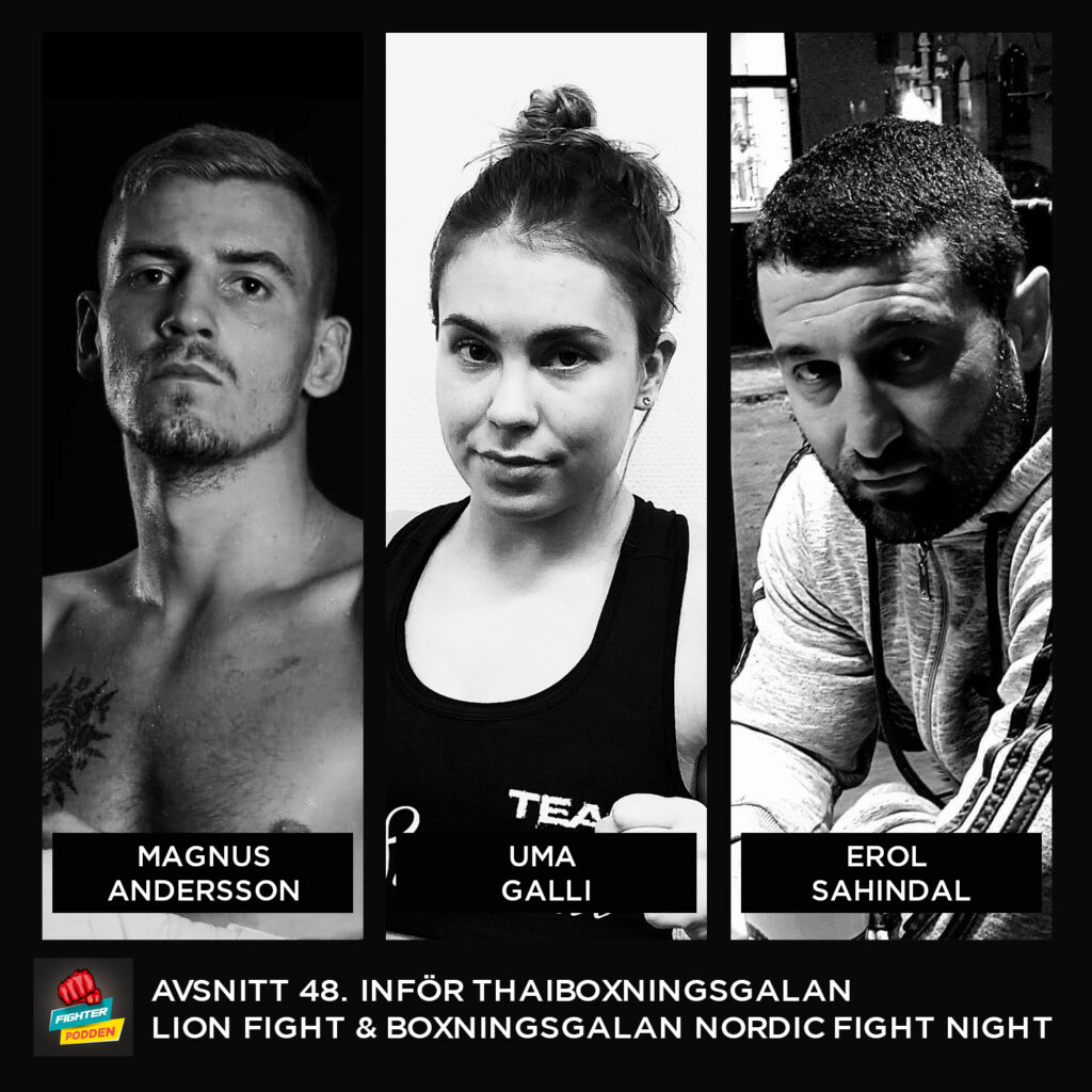 Fighterpodden avsnitt 48. Inför Lion Fight 53 och Nordic Fight Night